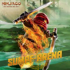 Ninjago Swamp-Arena