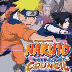 Naruto: Ninja Council